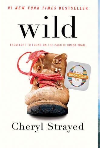 Book Review, Cheryl Strayed, WILD, Hiking