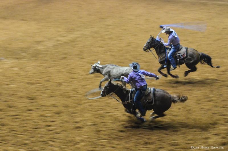 VisitFortWorth, SeeFortWorth, Family Travel, Fort Worth Texas, Rodeo, Stockshow, Texas Tradition