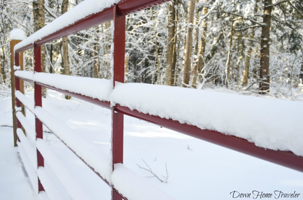 Snow Covered Gate, Vermont, Hike, Winter, Snow, Gate, Fence, Eden Vermont