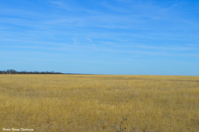 Texas Historical Landmark, Native Prairie Grassland, M.L. Smiley, Texas, Texas Agriculture, Hwy 82